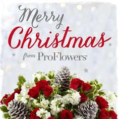 Merry Christmas from ProFlowers