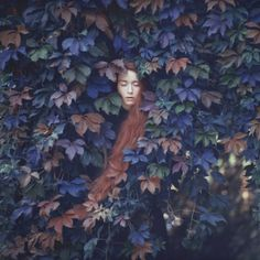 We Are Selecters · Oleg Oprisco