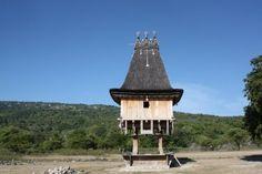 Caetano da Costa Freitas' world - Photos from East Timor | ABC ...