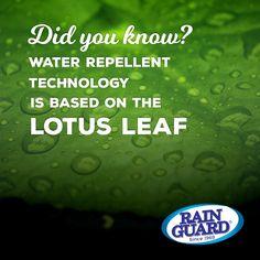 #hydrolok #funfact #waterrepellent #LetsGetItDone