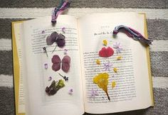 Create your own beautiful pressed flower bookmarks that will last a lifetime thanks to some handy lamination!
