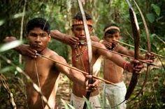 Resultado de imagem para imagens atuais de indigenas brasileiros de diferentes regioes do pais