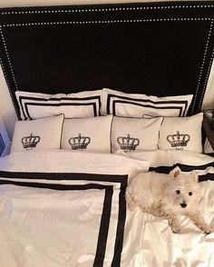 #Repost @westie_photos  New guest's bed from @classicliving #westie #westiesarethebest #westiegram #westielovers #westhighlandwhiteterrier #newbed #bed #bedroom #happydog #dog #whitedog #home #homesweethome #cosy #whiteandblack #wensday #classicliving #sengegavl #interor #interiør #interiordesign #krone #puter #hansenogdysvik #sengetøy #pillows