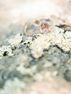 Rose gold engagement rings we love: http://www.stylemepretty.com/2015/12/02/surprisingly-gorgeous-rose-gold-engagement-rings/
