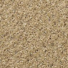 wall to wall carpet buying guide