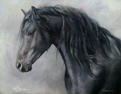 2015/08/06 Black Horse