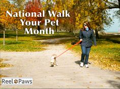 It's National Walk Your Pet Month! Do you have a favorite place to walk your dog?