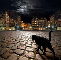 Night stroll in Strasbourg, France. : pics