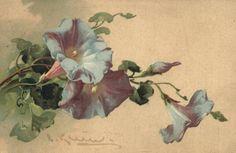 Catherine Klein vintage floral vine postcard