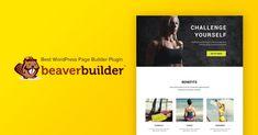Beaver Builder WordPress Page Builder Plugin: thebigbazar — LiveJournal