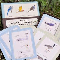 Sibley Backyard Birding Flash Cards