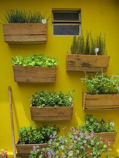 Horta em caixotes