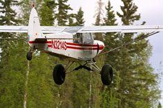 Normal Alaskan Transportation in the Interior. Eddie Rickenbacker, Kit Planes, Piper Aircraft, Airplane Painting, Bush Pilot, Bush Plane, Float Plane, Experimental Aircraft, Paint Schemes
