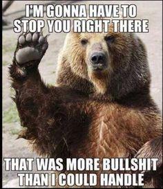 Fed up bear
