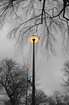 UFO lights at Harvard