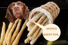 Como hacer grisines | palitos | galletas para perros. Receta: 3 ingredientes…