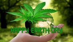 Weed Memes, Cannabis, Happy Earth, Smoking Weed, Earth Day, Go Green, The Originals, Ganja