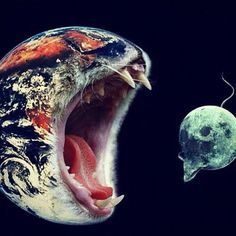 Terra as a cat