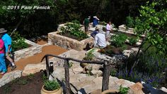 And here's my hillside veggie garden