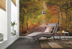 Painéis fotográficos de natureza garantem bem-estar e dão personalidade à decoração