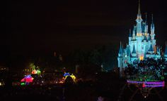 Disney Parks After Dark: Main Street Electrical Parade in Fast-Forward at Magic Kingdom Park