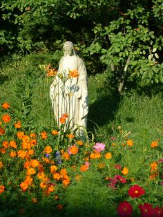 Great article and lots of information on the flowers for your Mary Garden.