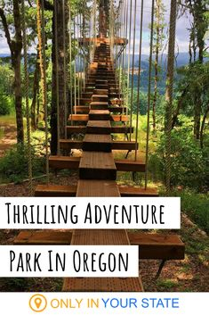 There's An Adventure Park Hiding Near Portland And You Need To Visit If you're up for a thrilling outdoor adventure, check out this fantastic treetop course near Portland, Oregon. It's family friendly! Oregon Vacation, Oregon Road Trip, Oregon Travel, Vacation Spots, Travel Usa, Travel Diys, Travel Plane, Travel Info, Cool Places To Visit