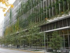 """Rush University Chicago   greenscreen® """"fins"""" run perpendicular to the facade of the parking garage. Elevated planters provide soil for the vines.   http://greenscreen.com"""