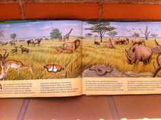 Presente... la sabana africana en la actualidad