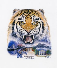 Memphis State University now known as The University of Memphis! Memphis Art, Memphis Tigers, Memphis Tennessee, Tennessee Tattoo, Memphis Basketball, Tiger Pictures, Tiger Art, Go Big Blue, Tatoos