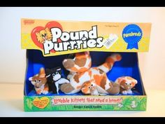 pound purries - Google Search