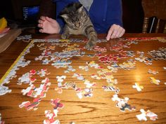 helping with a puzzle!