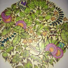 Completed Owl Mandala Enchanted Forest #enchantedforest #joannabasford #colouring
