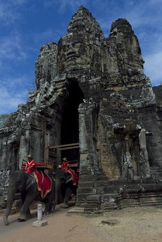 Elephants at Angkor Thom South Gate , Cambodia