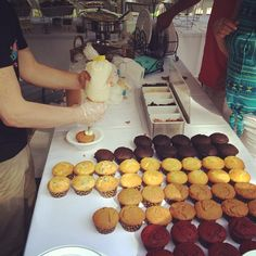Cupcake bar! What!! Choose your cake, filling, icing and topping! #schubertpartyof2 #sugarrush #redbank