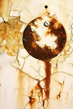 beautiful abstract decay