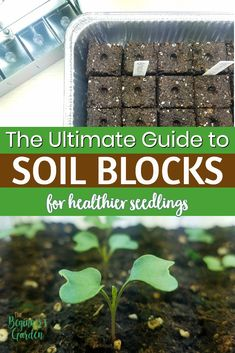 The Ultimate Guide to Soil Blocking! How to make soil blocks with the best soil recipes to satisfy any DIY gardener. Get ready to start your seeds! #soilblocking #beginninggardener #seedstarting Herb Seeds, Garden Seeds, Gardening For Beginners, Gardening Tips, Diy Garden Projects, Garden Tools, Peat Moss, Amazing Gardens, Dig Gardens