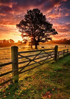 Frosty Autumn Sunrise is part of Country scenes - Beautiful Award Winning Landscape Photography By Gary McParland From Ireland, Northern Ireland , Scotland and The UK Prints are available to Purchase Cenas Do Interior, Beautiful World, Beautiful Places, Beautiful Scenery, Country Scenes, Belle Photo, Pretty Pictures, Beautiful Landscapes, The Great Outdoors