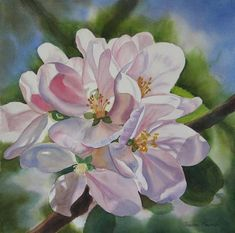 Apple Blossoms Painting by Sharon Freeman - Apple Blossoms Fine Art Prints and Posters for Sale