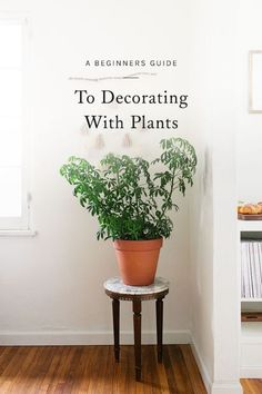 although a green thumb doesn't come naturally to all, rest assured that it's still possible inject a dose of freshness into your space. click for some of my favorite ways to introduce a bit of greenery into your home without the heavy maintenance.