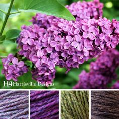 'Lilacs' color palette features Brooklyn Tweed's SHELTER yarn in Blanket Fort, Thistle, Nest, and Pumpernickle. Beach Color Palettes, Rustic Color Palettes, Earthy Color Palette, Rustic Colors, Color Palate, Vintage Colors, Yarn Color Combinations, Colour Schemes, Design Seeds