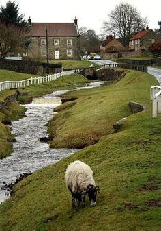 England Travel Inspiration - Hutton le Hole is a small, tranquil village, located on the very edge of the North Yorkshire Moors between Kirkbymoorside and Pickering.