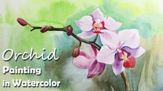 How to Paint Orchid Flower in Watercolor - YouTube