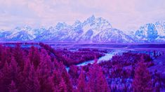 OgNature.com - Trees Mountains Purple Landscape River Tetons Snake Grand Full Hd High Resolution Wallpapers, High Definition, Snake, Trees, River, Mountains, Landscape, Purple, Places