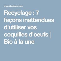 Recyclage : 7 façons inattendues d'utiliser vos coquilles d'oeufs   Bio à la une