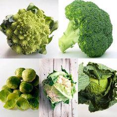 ¿No te gustan las verduras? ¿No sabes como cocinarlas muchas veces porque te quedas sin opciones? Descubre diferentes formas de cocinar con verduras para que no se te agoten las ideas.