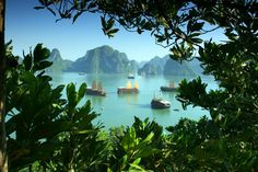 Halong Bay - Vietnam | 17 Stunning Natural Wonders You Didn't Know Existed