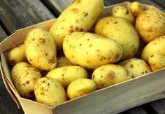 die Kartoffel (n)