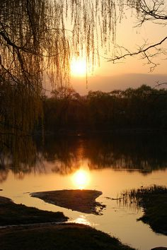 Sunset scene, Valley of the Roses park, Chisinau, Moldova
