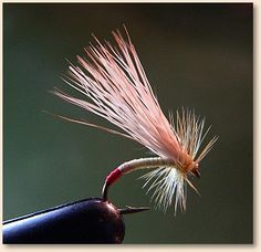 Yellow Sally:        HOOK: #8-#14 curved scud or caddis emerger shape. See also pictures of hook variations below. The key is the curved shape, so the back of the fly rides low. In a pinch, you can take a standard dry fly hook and gently bend it in the middle of the shank with needlenose pliers before tying.        THREAD: Cream or light cahill.        TAG: Red floss.        BODY: Thread.        WING: High-quality bleached deer or elk hair.        HACKLE: High-quality yellow dyed dry fly…